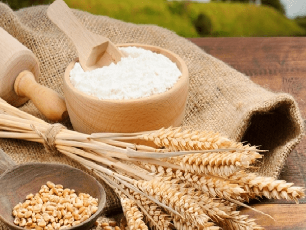 Bột mì là gì? Phân loại bột mì - Đào Tạo Bếp Trưởng