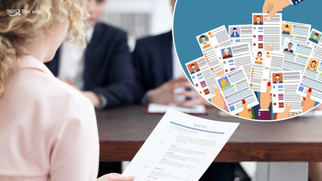 Trọn bộ mẫu CV xin việc độc đáo, ấn tượng chỉ có tại timviec365.vn