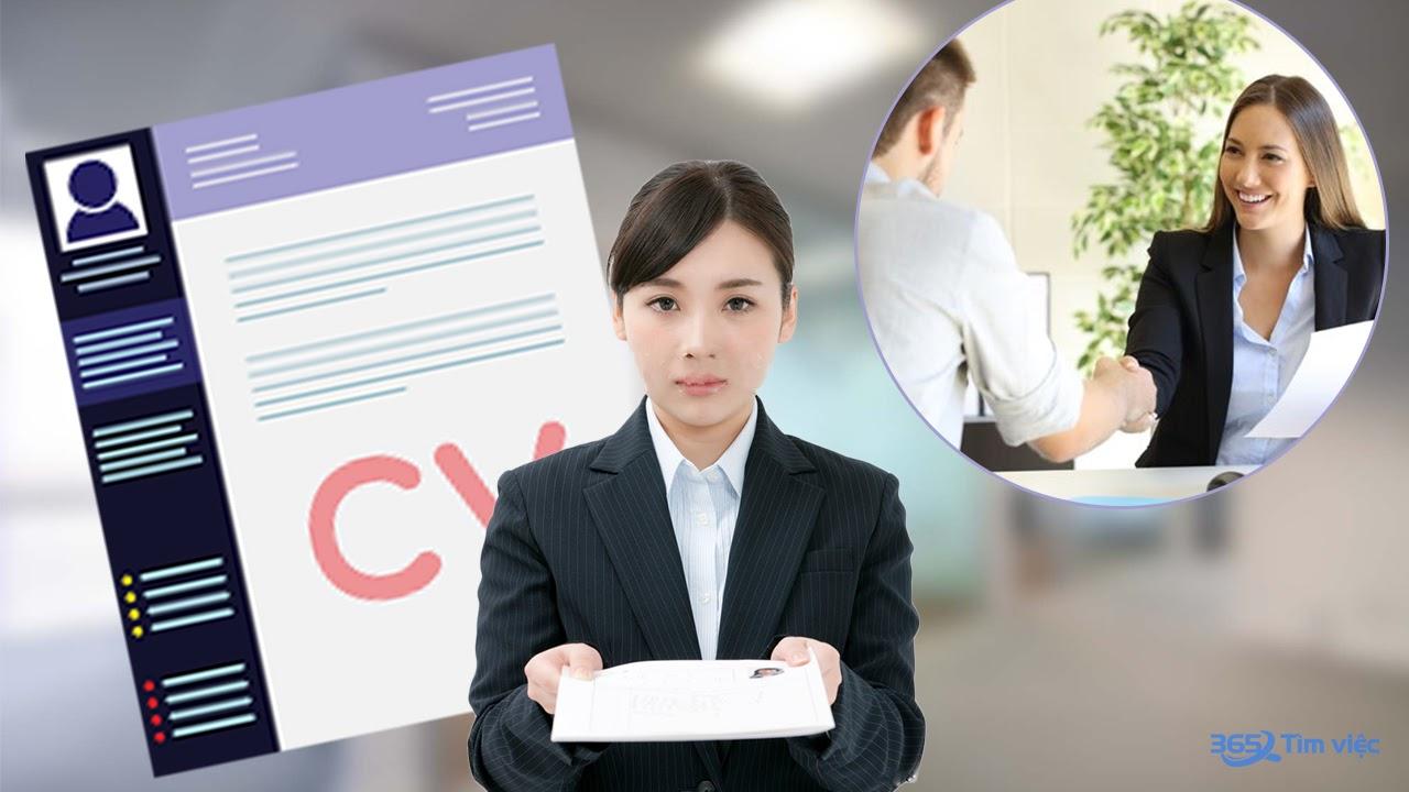CV timviec365.vn - đa dạng ngành nghề, lĩnh vực